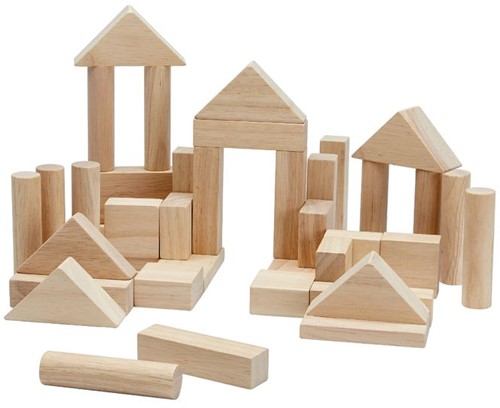 Plan Toys 40 blokken naturel