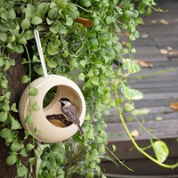 Plan Toys Bird Feeder 8608-2